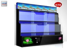 JX85701 Aquarium Aquarium & Accessory Type and Aquariums & Accessories Type arowana with cheap price good quality