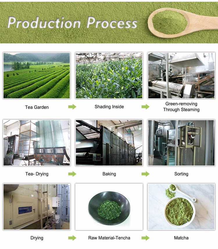 GAP,HACCP,ISO,HALAL Certification Matcha Powder Green Tea Extract
