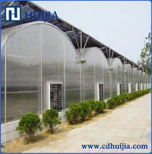 Film or net Cover Material and Large Size Multispan Agriculture Poly Greenhouse film