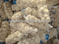 Fresh Normal White Garlic(10kg/mesh bag)