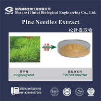 pure natural bulk pine needle extract powder 10:1
