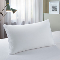 Excellent Durability Anti Wrinkle Pillow For Hotel