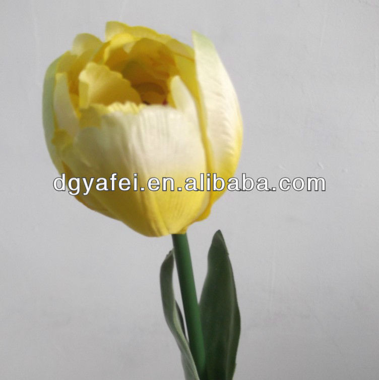 Hot sale flowers for wedding,tulip