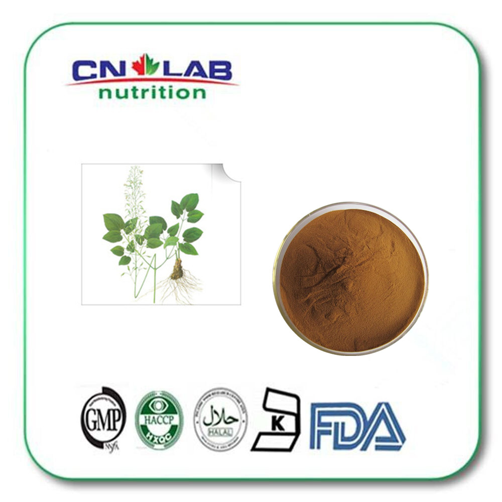 Herbs High in Epimedium Promote Sexual Function HPLC 10%-98% CAS:89-32-7