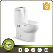 Siphonic 1.28GPF Single Flush One-Piece Toilet in White C-66
