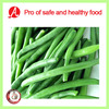 High Quality Frozen Green Beans From China
