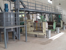twin screw cold press palm kennel extraction equipment