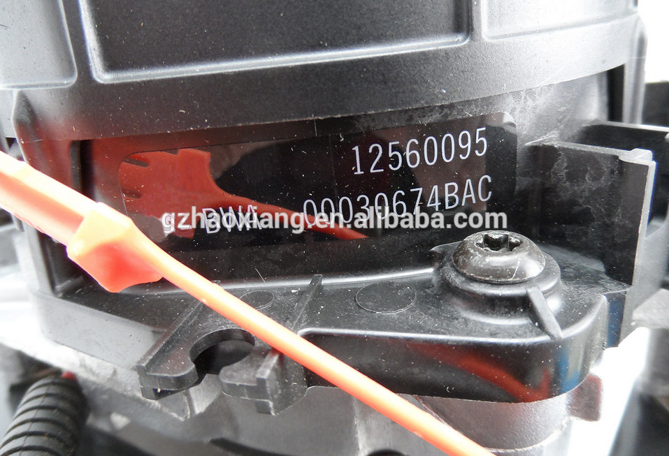 Air lnjection Pump OEM 12560095