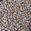 wholesale Chinese light speckled kidney beans