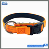 Premium Nylon Dog Collars personalized custom
