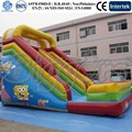 China Cheap Giant Inflatable Dry Slides For Sale