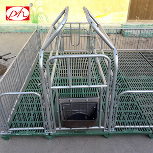 European Standard good design for sow farrowing crates for pigs