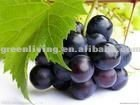 fresh black seeded grapes