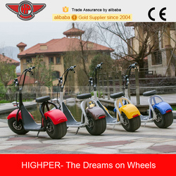 Good Quality of 800W Brushless Adult Electric Motorbike,Electric chopper,Electric harley