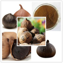 Factory Korean Black Garlic Powder Extract/Bulk Korean Black Garlic Powder/Lowest Price Korean Black Garlic Extract