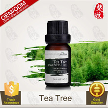 Natural Skin Care Product Tea Tree Oil 100% Pure Essential Oil GMPC certified
