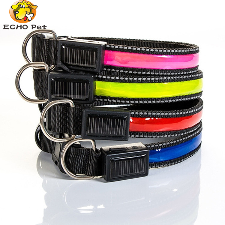USB Rechargeable Glowing LED Pet Dog Collar Light for Night Walking