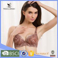 China OEM No Padded Transparent Latest Hot Sexy Lace With Wire Latest Sexy Girls Fashion Bra