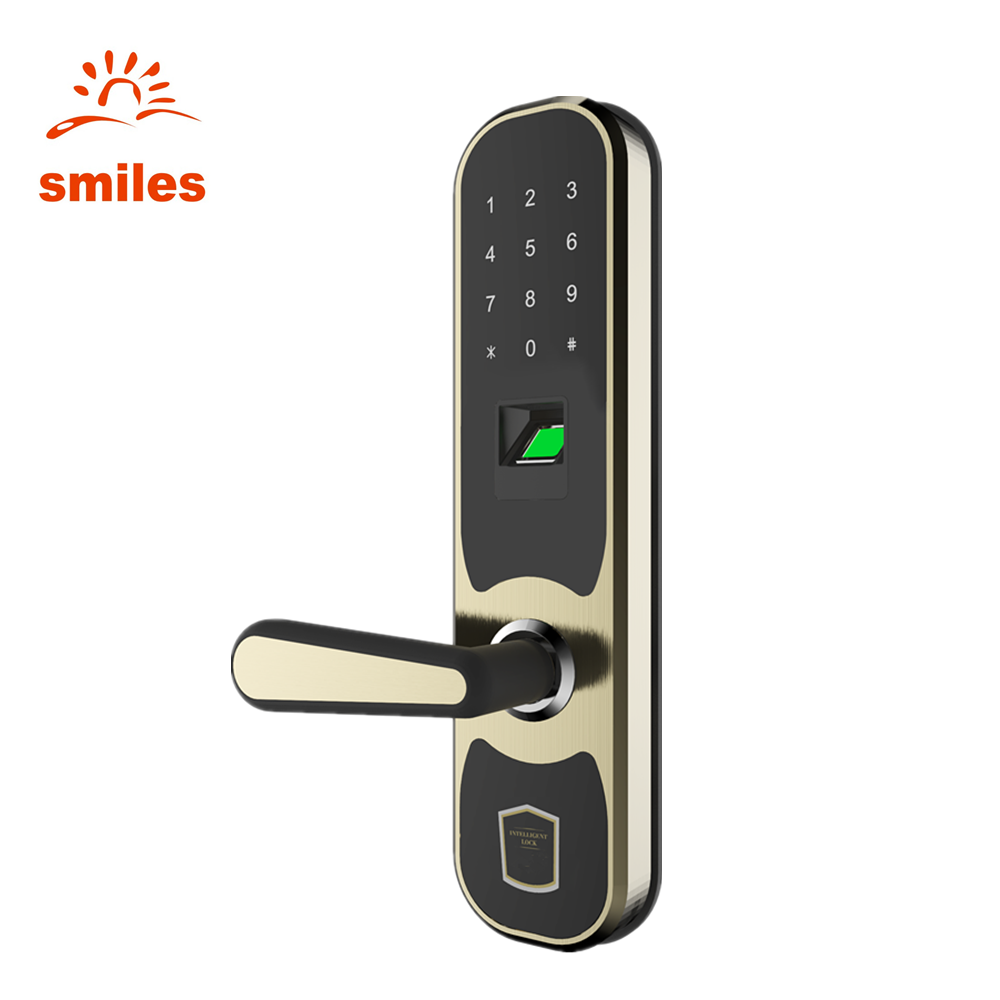 Intelligent Finger Door Lock/Biometric Keyless entry Support Card reader, Password, Remote Control
