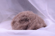 Chinese natural white brown 100% pure camel hair fine fibre from alashan
