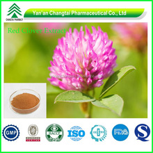 GMP factory supply Hot sale Top quality Red Clover Extract