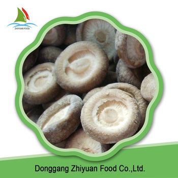 IQF Mushroom And Frozen Shiitake Price With Certificate