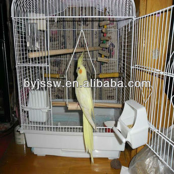 bird cage by plastic