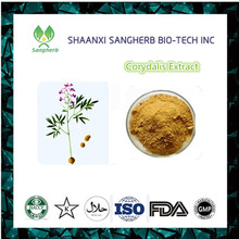 High Quality 10:1 pure Corydalis yanhusuo extract W.T.Wang Rhizoma Corydalis P.E CAS NO.:2934-97-6