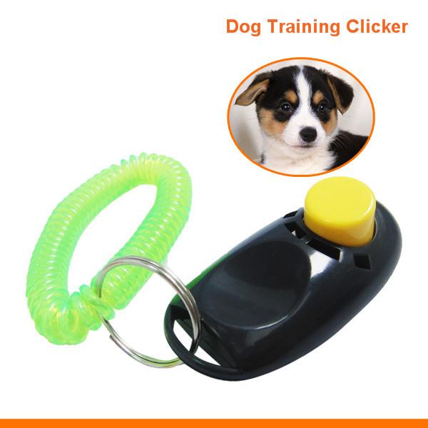 Hot Sale Pet Training Product Dog Training Devices Dog