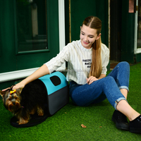 dog carrier for airline travel