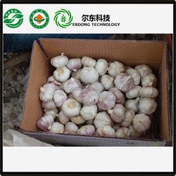 Chinese red garlic price, natural dried garlic red 2015 new crop
