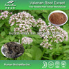 Top Quality Valerian Extract,Valerian Root Extract,Valerian Powder