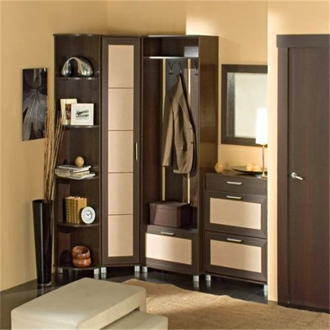 Fashion open closet design made in China/Walk In Wardrobe Furniture