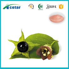 HACCP factory manufacturing belladonna herb extract powder