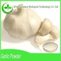 100% natural powder garlic in high quality