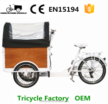 Auto tricycle 3 wheel cargo bike for carry children and so on