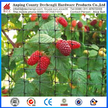 15x15 mm cheap bird netting for raspberry