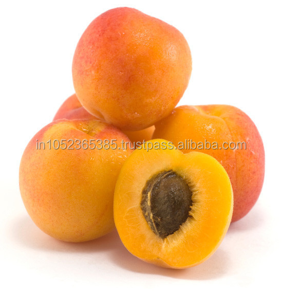 Carrier Oil - Apricot Kernel Oil