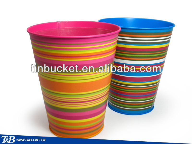 colorful small galvanized Gardening bucket