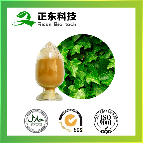 Manufacturer high quality 35% Hederagenin Ivy Leaf Extract powder Ivy Extract