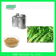 High purity Apigenin celery extract(98%)
