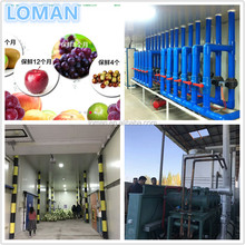 CA cold room for fruit and vegetables 2500 tons Project In Uzbekistan