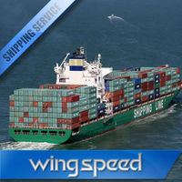 container sea freight from China to india/dubai/chennai/singapore
