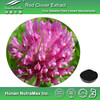 Hot Sell Red Clover Extract Isoflavones, Red Clover Extract Isoflavones 40%, Trifolium Pratense Extract