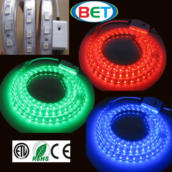 BET SMD 5630/5730 ETL ip67 lled strip edison led rope light 10mm wide led strip 220V 277V high voltage