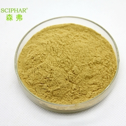 High quality natural wild mango seed powder extract