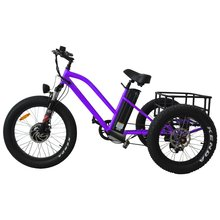 Three Wheel Cargo Fat Tire Electric Tricycle