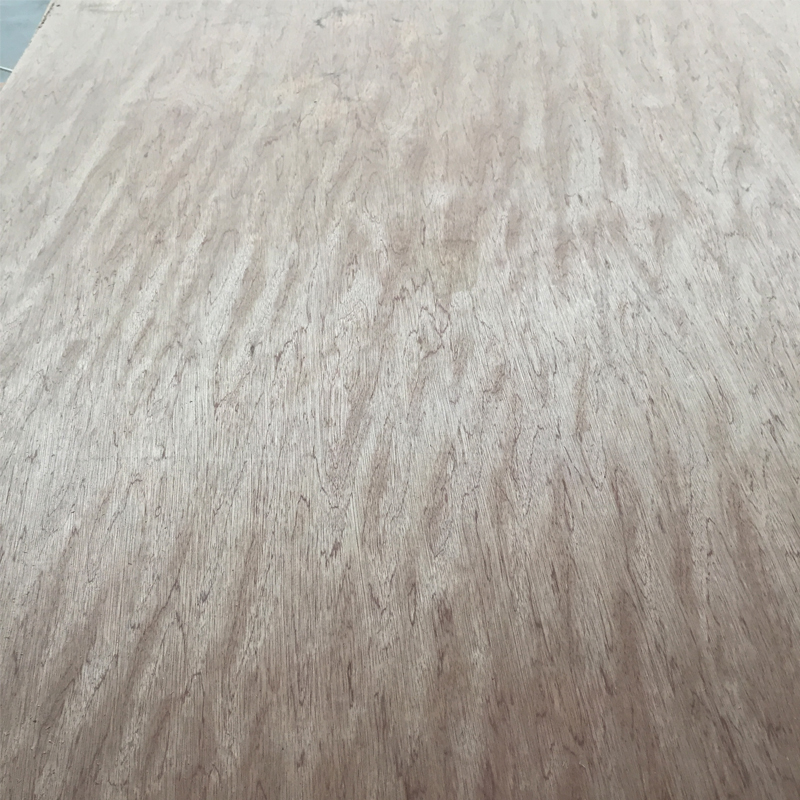 16mm Red Meranti Face Plywood Price In India Hardwood Core
