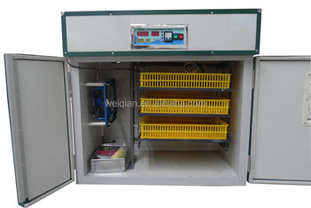 good quality best price 176 eggs incubator with hatcher/brooder for poultry