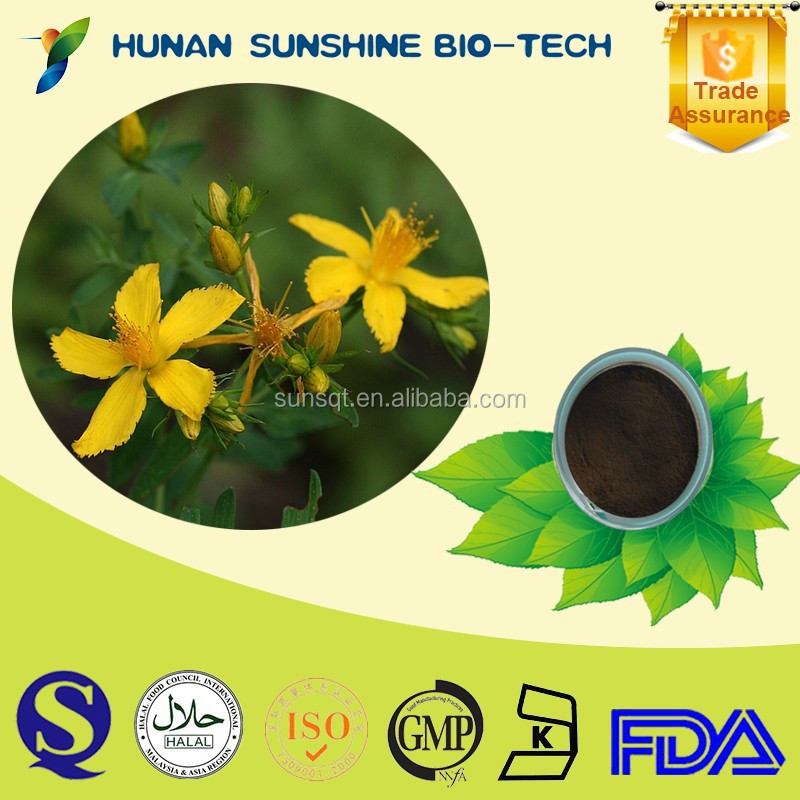 Crude herbal medicine for depression plant extract 0.3% Hypericin